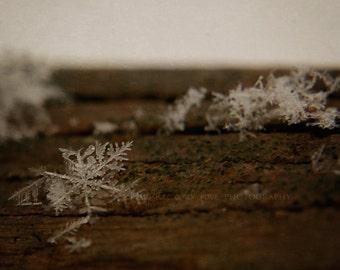 Rustic Wood Desktop Background Items Similar To Snowflake Photography Winter Snow Macro