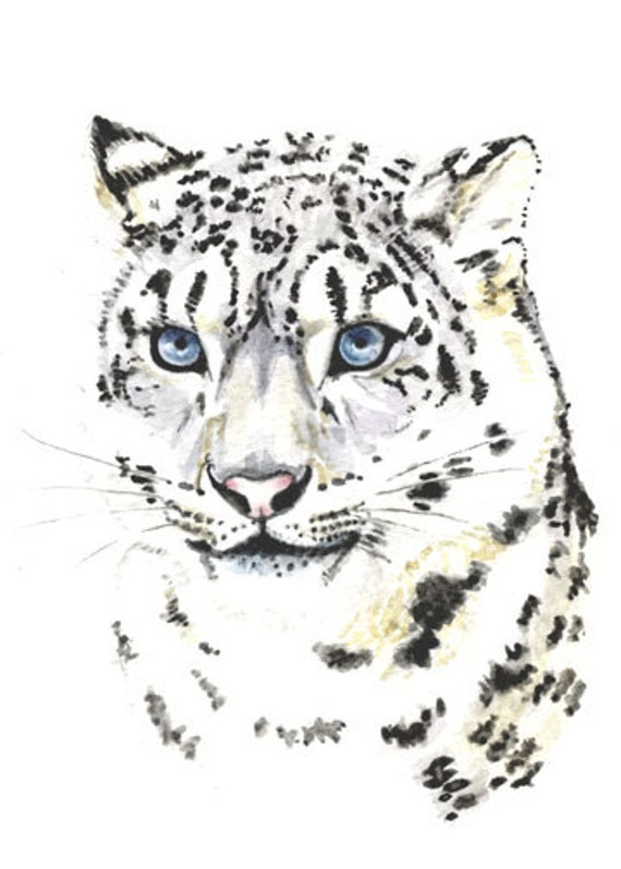 Snow leopard, 5x7  PRINT from original painting, big cats, art & collectibles earthspalette