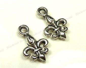 15x10mm Antique Silver Tone Fleur De Lis Metal Charms - 15pcs - Jewelry Supplies, Findings - BT5