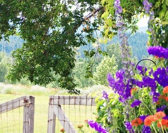 Garden Photography - rustic gate photo, gate picture, nature photography, home decor, flower photograph