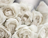 """Ethereal White Roses Print, Shabby Chic, Cottage Chic, Cream, Ivory, Gray, Color 10x8"""" Fine Art Wall Print"""
