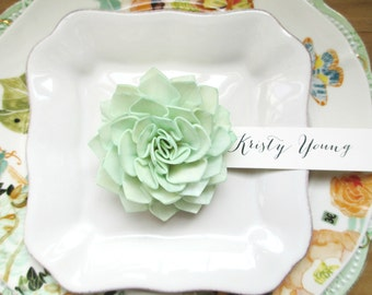 Wedding Place Cards, Mint Wood Wedding Place Cards, Mint Place Cards, Wedding Escort Cards, Mint Wedding