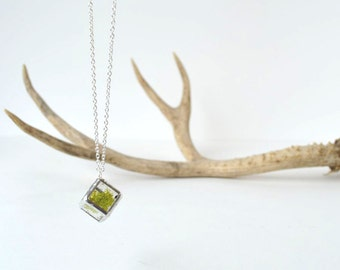 "Mini Cube Moss Terrarium Necklace with 28"" Sterling Silver Chain"