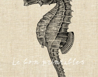 Printable art seahorse iron on transfer digital image instant download