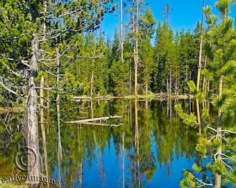 Yellowstone Reflections, Nature Photography, Landscape Photography, Yellowstone National Park, Water Reflections, US National Park