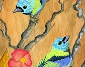 Green Headed Tanagers. Panoramic print. Two green and blue birds on branches. Hibiscus flowers. 12x36 panoramic print