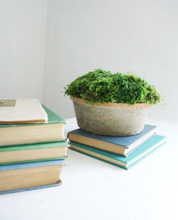 moss mound in aged terra cotta- preserved moss arrangement