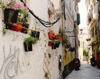 Greece Photography - Corfu Photograph - Greek Alley Print  Urban Garden Photo Street Wall Art Mediterranean Decor Travel Photography