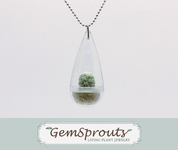End of Season Sale - Real Living Tiny Green Thimble Cactus Plant Droplet Necklace with Ballchain