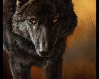 Black Wolf Wildlife Fine Art Print