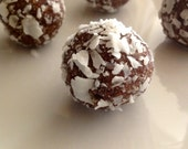 Organic Chocolate Hazelnut Truffle Snowballs / Gluten Free / Vegan / Raw / Low Carb / Paleo Friendly