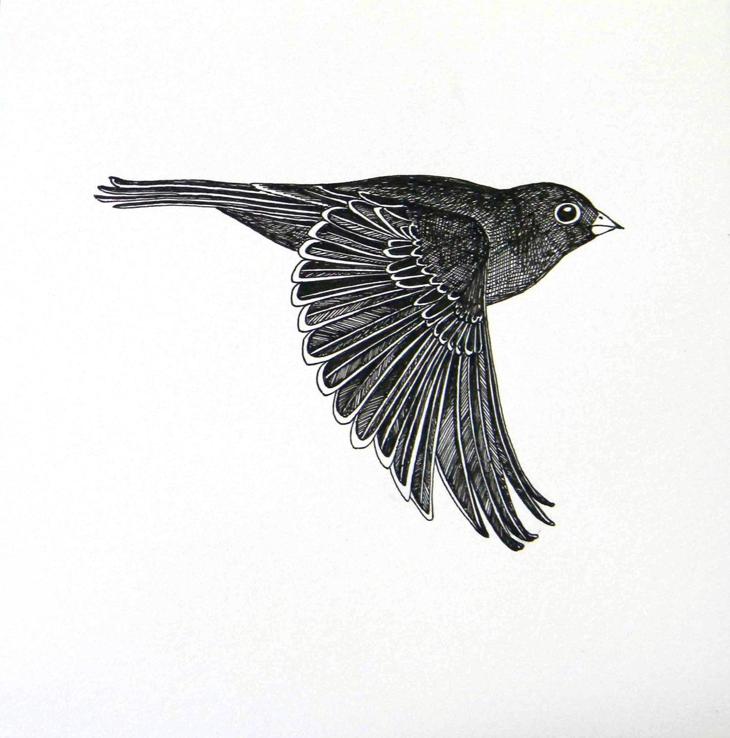 It is an image of Inventive Birds Flying Drawing