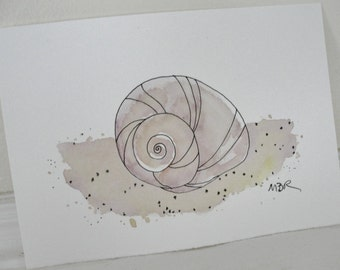 Beach Snail Watercolor Painting, Ink Drawing, Snail Shell, Summer, Moon Snail Painting, Ink and Watercolor,  5 x 7
