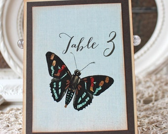 Botanical Butterfly  Table Numbers