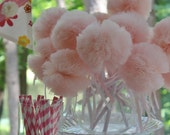 Pink Ballerina Princess Party Pack of 16 Wee Whimsy Wishing Wands, - whimsywendy