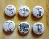 Mushroom pinback button badge