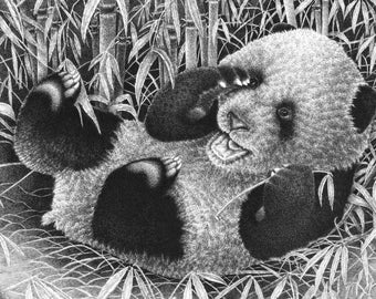 Children's Art 7x5 Giclee Print of a Giant Panda Cub, Wildlife Art Gift, Animal Black and White Illustration, Picture, Wall Art Print