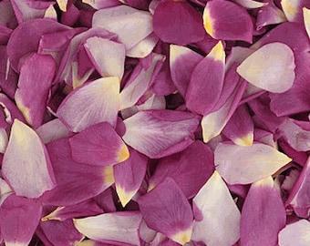 Natural Rose Petals Freeze Dried - 5 cups - Violet