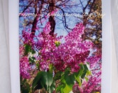 Floral Photo Card Pink Lilacs Flowers 5 x 7 With Envelope