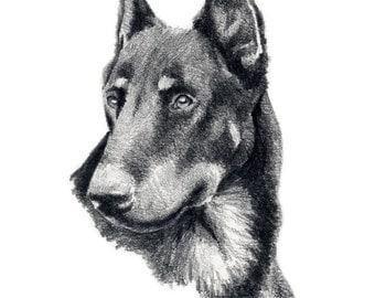 BEAUCERON Dog Art Print Signed by Artist DJ Rogers