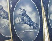 Ugly, Creepy, But I Love to Look at Them. Antique Rook Cards, Crow, Midnight Blue (5)