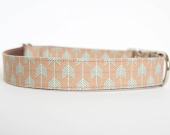Dog Collar - Khaki/Turquoise Camp Dog