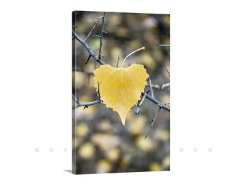 Leaf Art, Nature Photography, Canvas Print, Vertical Art, Canvas Wrapped Photo, Autumn Leaves, Fall Photo, Ready to Hang, Gallery Wrap