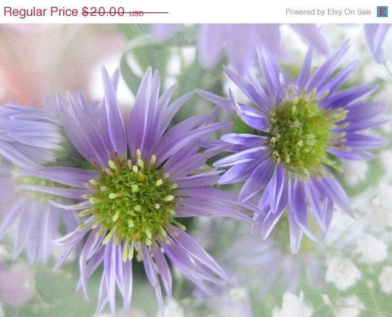 50% OFF CIJ SALE Purple and Green Digital Photograph