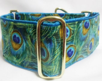 Peacock Plume Greyhound, Whippet, Galgo Martingale Collar