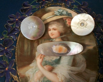 Mother of Pearl Earrings and Pin Set Antique Carved Shell
