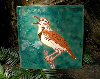 Meadowlark , CUSTOM ORDER - 4-6 wks production time,bird tile with fine detail for the bird lover, arts and crafts, accent tile, birder