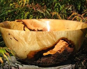 Big Silver Maple Burl bowl