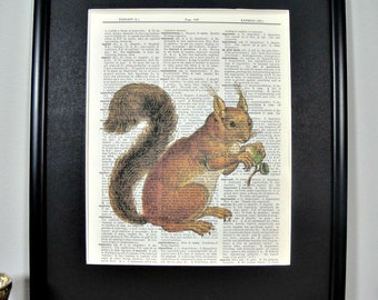 FRAMED Vintage Dictionary Print - Woodland Series - Squirrel