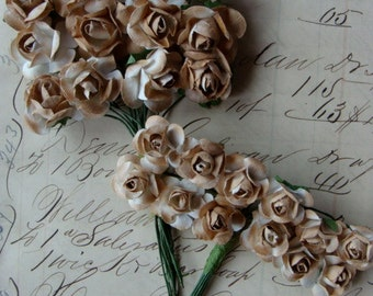 Tea Stained Paper Roses 2 Dozen Lot