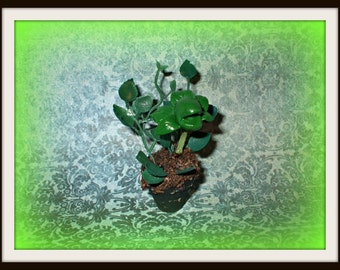 Gothic Witch Wizard Halloween Maneating plant dollhouse miniture ooak