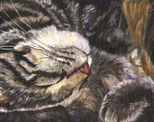 Cat Fine Art Print on Watercolor paper Brown Tabby
