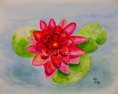 Water lily painting, lotus flower art