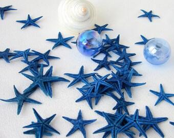 "Beach Decor Small Blue Starfish - Nautical Star Fish, .5-1.25"" - 12PC"