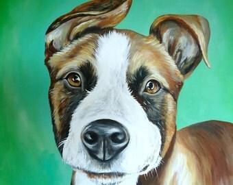 custom painted pet portrait size 20x20 statement piece