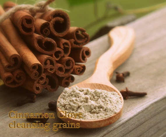 Cinnamon Clove Organic Facial Cleansing Grains vegan natural scrub polish spa SAMPLE