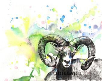 Cabra de montaña impresión del arte de la pintura de acuarela Original Animal 8 x 10 en tamaños más grandes son impresión de pintura de arte de cabra disponibles