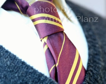 5x7 Harry Potter inspired Gryffindor Tie Photo