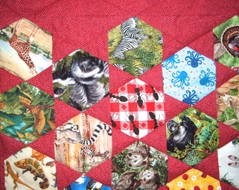 I Spy  Quilt in Red All Animals 50 Different Animals