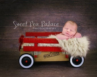 Instant Download Newborn Baby Child Photography Prop Digital Backdrop for Photographers - Radio Flyer Wagon
