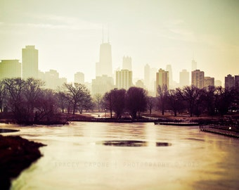 Chicago Skyline / fine art photography / wall art / Chicago print / Photograph of Chicago / neutral home decor / beige, brown, burgundy art