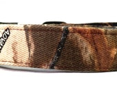 Duck Blind Hunting Camo with Cattails Camouflage Dog Collar