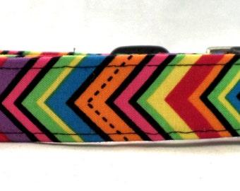 Wild 'N Funky Multi Colored Chevron Zig Zag Stripe Dog Collar