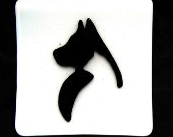 Cat In Dog Dish 2