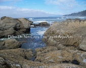 Beach Photography No. 4 Trail Washington State Digital Image Pacific Ocean