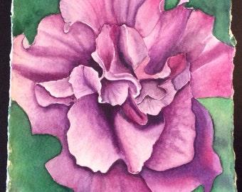 Original watercolor of purple double petunia.
